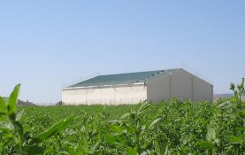 CONSTRUCTION OF AGRICULTURAL WAREHOUSE IN BIOTA